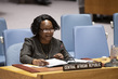 Security Council Considers Situation in Central African Republic 3.930634