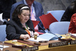 Security Council Considers Situation in Somalia 3.9297957