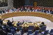 Security Council Extends Mandate of MINUSCA