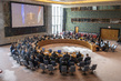 Security Council Meets on Situation Concerning Iraq 3.9279027