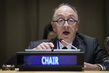 Peacebuilding Commission on Peace in Sahel and Lake Chad Basin 4.671176