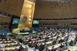 General Assembly Hears Reports of Third and Fifth Committees 3.221656