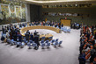 Security Council Observes Moment of Silence for Niger 3.9263198