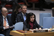 Security Council Considers Situation in Colombia 3.9249783