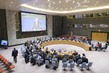Security Council Considers Situation in Yemen 3.9216352