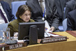 Security Council Meets on Situation in Ukraine