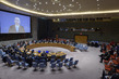 Security Council Considers Situation in Middle East 3.9204261