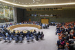 Security Council Considers Situation Syria 3.9204261