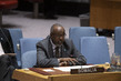 Security Council Discusses Situation in Somalia 3.9204261