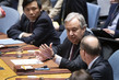 Security Council Meets on Situation in Syria 10.19524