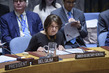Security Council Meets on Situation in Syria