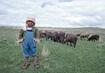 Child Labor Worldwide: It's Still a Problem 4.8137465