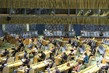 Economic and Social Council Holds First Plenary Meeting of 2021 Session 5.5315685