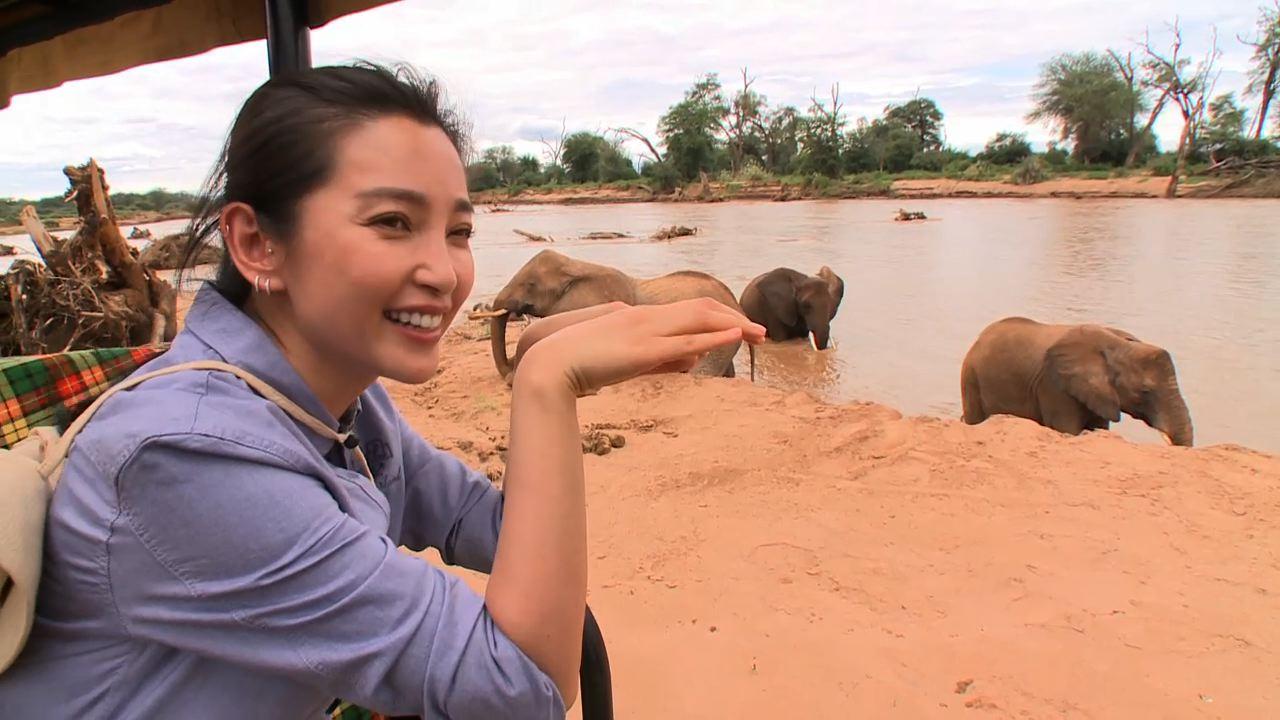 UNEP  LI BINGBING ELEPHANT POACHING