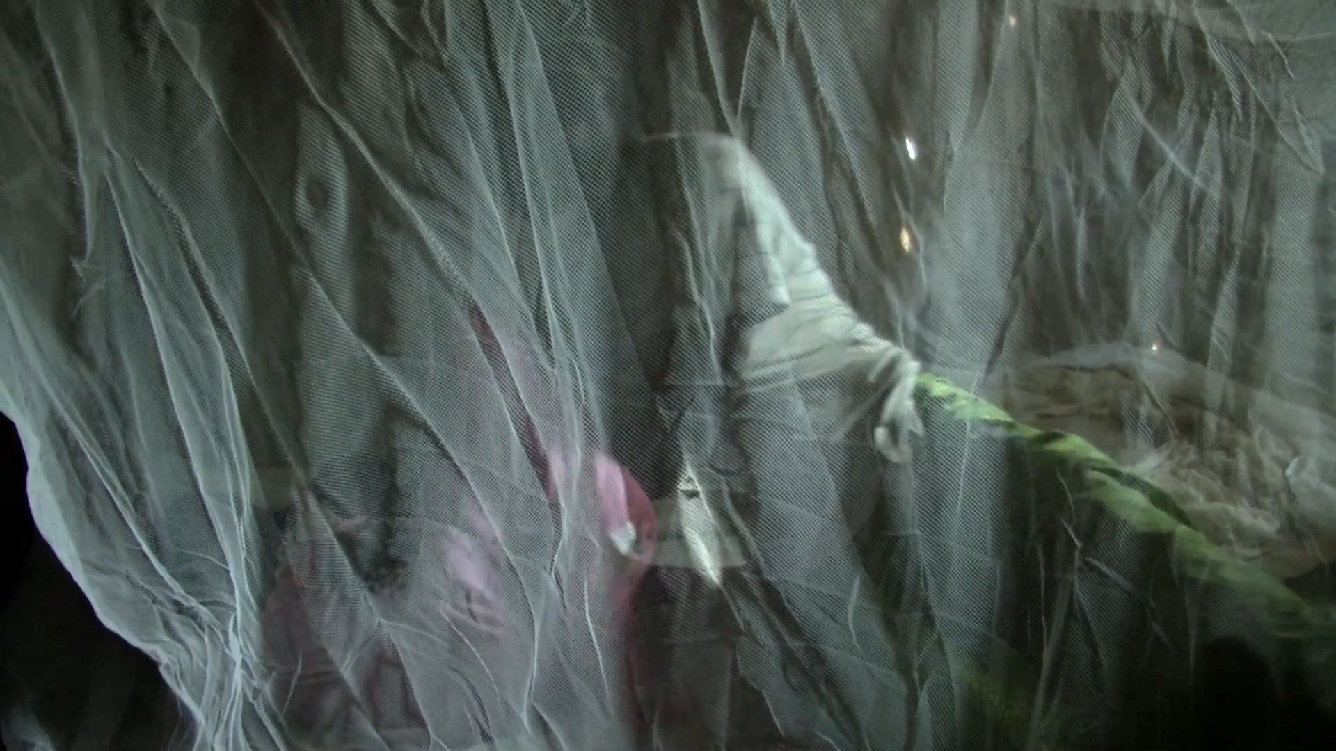 Selected frame from video story CENTRAL AFRICAN REPUBLIC/ MALARIA