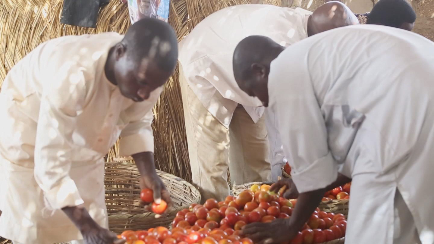 Selected frame from video story WORLD BANK / AFRICA PULSE