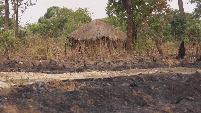 ZAMBIA / BIODIVERSITY