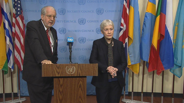 UN / SYRIA COI