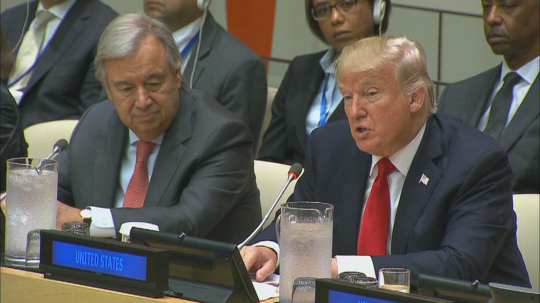 UN / UNITED NATIONS REFORM