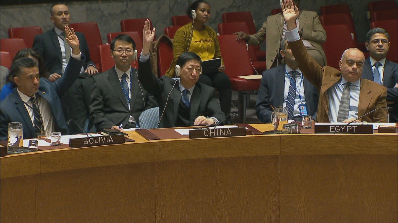 UN / SOMALIA ERITREA SANCTIONS