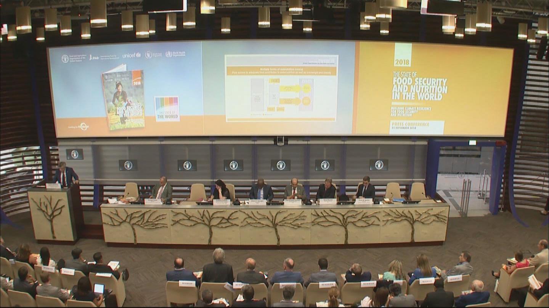 FAO / WORLD HUNGER REPORT