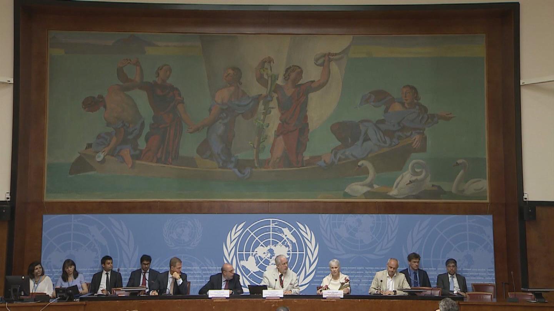 GENEVA / SYRIA COI REPORT