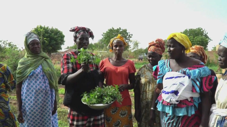 SENEGAL / WOMEN SAHEL DROUGHT