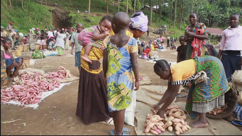 DRC  DISPLACED