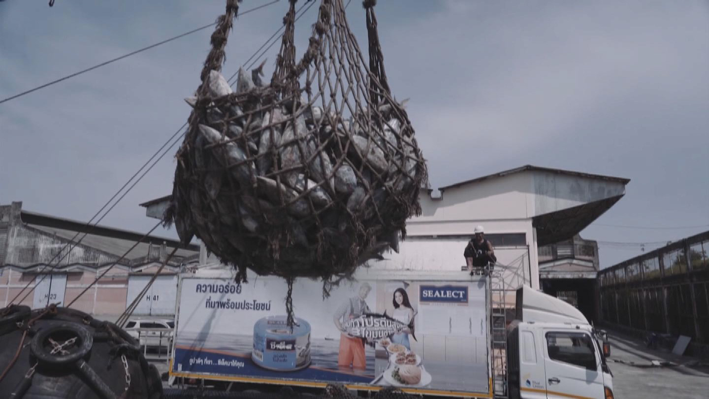 THAILAND  ILLEGAL FISHING