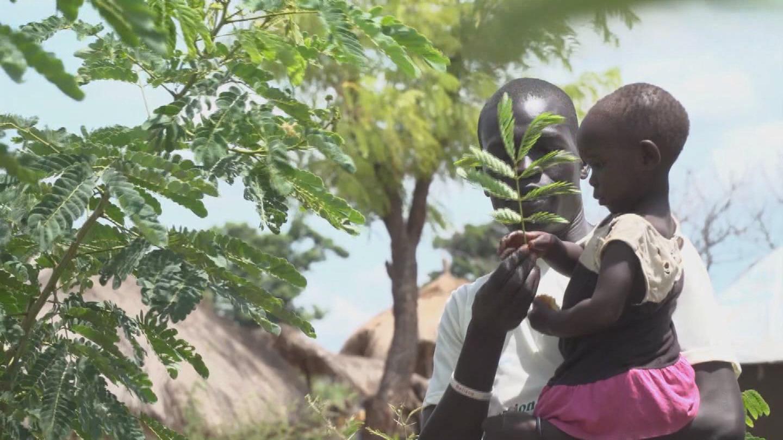 UGANDA  REFUGEES ENVIRONMENT
