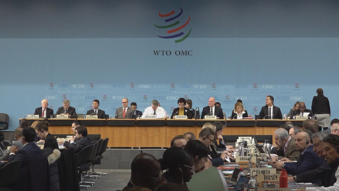 WTO  GENERAL COUNCIL BROLL