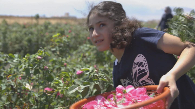 LEBANON  SYRIAN REFUGEE FARMER