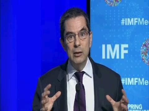 IMF  FISCAL MONITOR