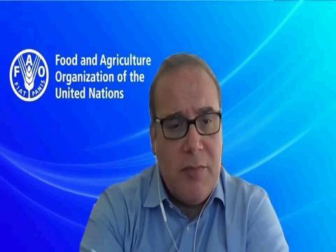 GENEVA  COVID-19 GLOBAL FOOD SUPPLY