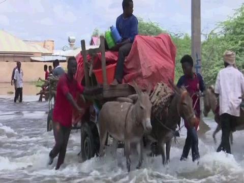 SOMALIA  FLOODS LOCUSTS COVID-19