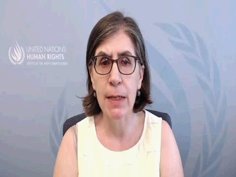 OHCHR  ZIMBABWE HUMAN RIGHTS